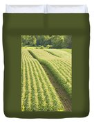 Late Summer Corn Field In Maine Duvet Cover
