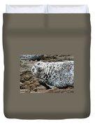 Laughing Seal Duvet Cover