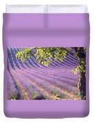 Lavender Field In France Duvet Cover
