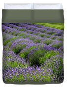 Lavender Rows Duvet Cover