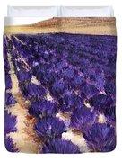 Lavender Study - Marignac-en-diois Duvet Cover