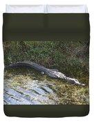 Lazy Alligator Duvet Cover