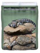 Lazy Lizard 2 Duvet Cover