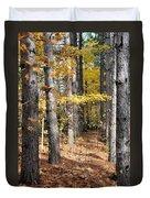 Leading To Autumn Duvet Cover