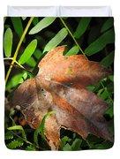 Leaf Among Ferns Duvet Cover