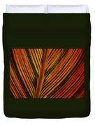 Cannas Plant Leaf Closeup Duvet Cover