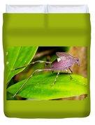 Leaf Katydid Duvet Cover