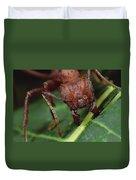 Leafcutter Ant Cutting Papaya Leaf Duvet Cover