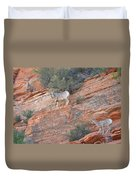 Learning How To Rock Climb Zion Duvet Cover