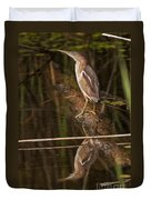 Least Bittern Pictures 17 Duvet Cover