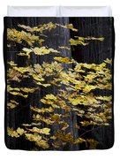 Leaves And Trees Duvet Cover