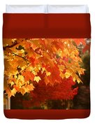 Fall Leaves In Afternoon Sun Duvet Cover