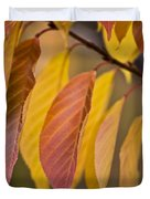 Leaves In Fall Duvet Cover