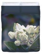 Lei Pua Kalaunu - Crown Flower - Calotropis Gigantea - Asclepiad Duvet Cover