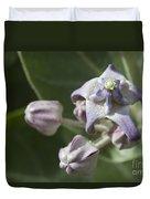 Lei Pua Kalaunu - Crown Flower - Calotropis Gigantea - Asclepiadaceae Duvet Cover