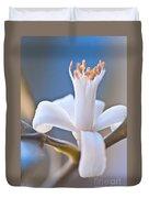 Lemon Blossom Duvet Cover