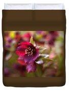 Lenten Rose Duvet Cover