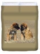 Leonberger Puppies Duvet Cover