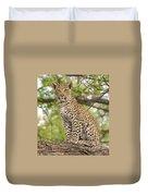 Leopard Cub Gaze Duvet Cover