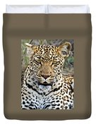 Wild Leopard In Botswana Duvet Cover