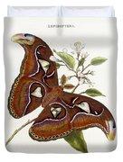 Lepidoptera Duvet Cover by Edward Donovan