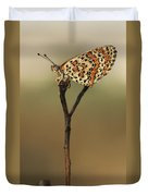 Lesser Spotted Fritillary Duvet Cover by Alon Meir