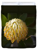 Leucospermum  -   Yellow Pincushion Protea Duvet Cover
