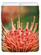 Leucospermum Pincushion Protea Flower - Tropical Sunburst - Hawaii Duvet Cover
