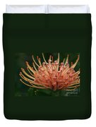 Leucospermum  Pincushion Protea Tropical Sunburst Protea Flower  Duvet Cover