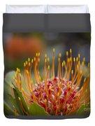 Leucospermum Pincushion Protea - Tropical Sunburst Duvet Cover