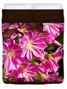 Lewisia Cotyledon Flowers Duvet Cover
