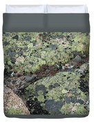 Lichen And Granite Img 6187 Duvet Cover
