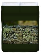 Lichen Macro I Duvet Cover