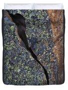 Lichen On Granite Duvet Cover by Heiko Koehrer-Wagner