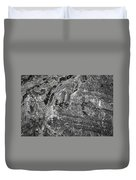 Lichen On The Whistlers - Black And White Duvet Cover