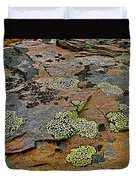 Lichens Along Trail To Plain Of Six Glaciers In Banff National Park-alberta-canada Duvet Cover