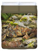 Lichens And Moss In Glen Strathfarrar Duvet Cover
