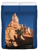 Light And Shadow In The Bryce Canyon  Duvet Cover