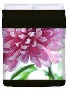 Light Impression. Pink Chrysanthemum  Duvet Cover