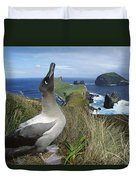 Light-mantled Albatross Sky-pointing Duvet Cover