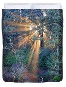 Light Shine Duvet Cover