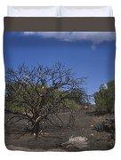Lightning Struck Tree Duvet Cover