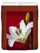 Lily Against Red Wall Duvet Cover by Garry Gay