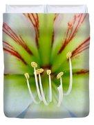 Lily -lilium Duvet Cover