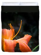 Lily Showing Pistil And Anthers Duvet Cover