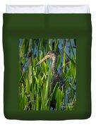 Limpkin Grass Duvet Cover