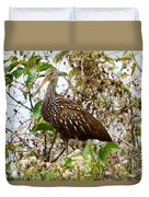 Limpkin In A Tree Duvet Cover