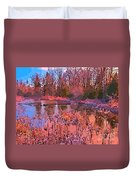 Linear Abstraction Of Pond Duvet Cover
