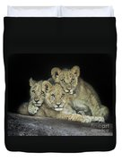 Three Lion Cubs Duvet Cover