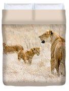 Lion Family Duvet Cover